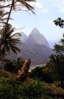 The Pitons,St Lucia